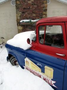web-55-n-snow